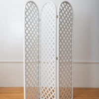 Privacy Screen 2 - $15